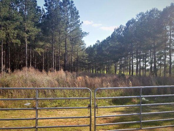 776 County Rd. 68/Trawick Rd., Dothan, AL 36305 Photo 44