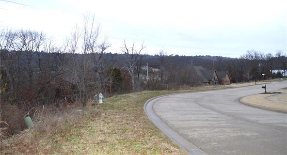 181 N. Skyview Ln., Fayetteville, AR 72701 Photo 2
