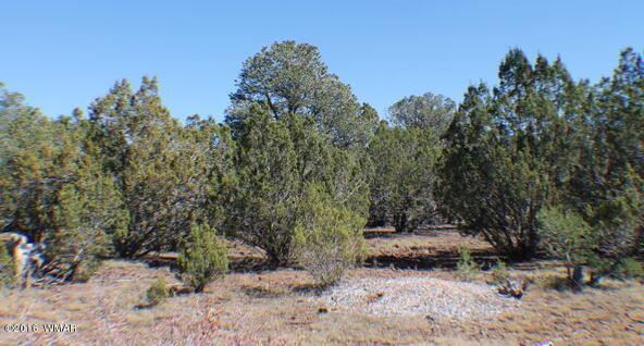 8 Acres Off Of Acr N. 3114, Vernon, AZ 85940 Photo 20