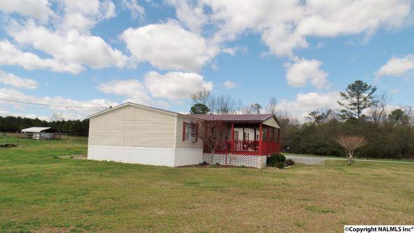 547 County Rd. 550, Grove Oak, AL 35975 Photo 6