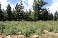 Home for sale: Lot 73 High Country Rd., Lava Hot Springs, ID 83246