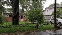 Home for sale: 139 Waldron Avenue, Staten Island, NY 10301