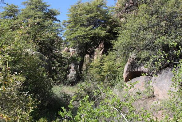 2041 E. Boulder Creek Ln. Lot 16, Prescott, AZ 86301 Photo 8