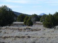Home for sale: 203 Abandoned Trail, Ash Fork, AZ 86320