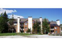 Home for sale: 73 Alpine Dr., Pv C403, Killington, VT 05751