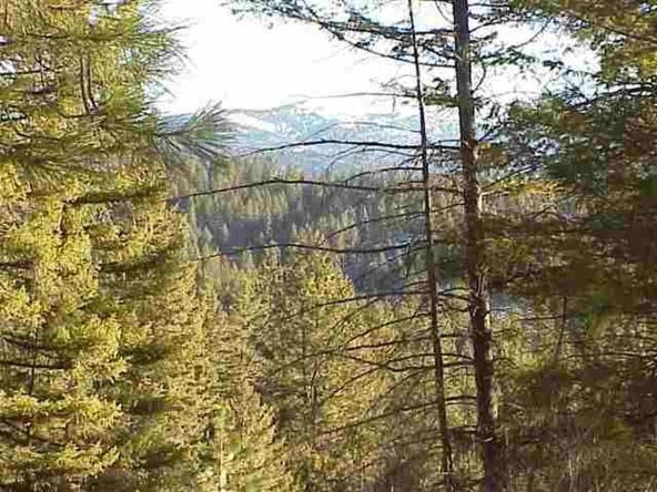 Tbd Star Claim Tract 3, Idaho City, ID 83631 Photo 5