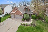 Home for sale: 26449 West Melissa Dr., Channahon, IL 60410