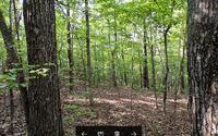 Home for sale: Lot 3 S. Star Creek Estates, Morganton, GA 30560