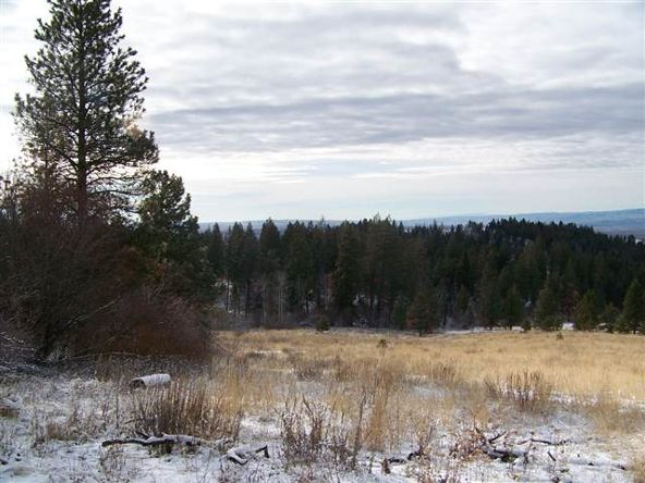 62 Little Fall Creek, Council, ID 83612 Photo 6