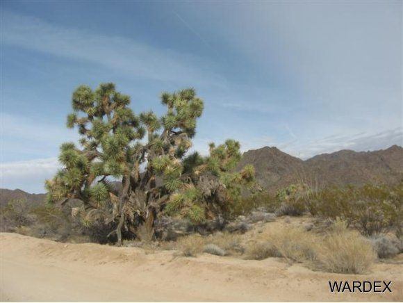 11932 S. Sherry Rd., Yucca, AZ 86438 Photo 23