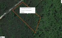 Home for sale: 913 Robertson Bluff Ct., Marietta, SC 29661