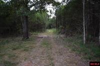 Home for sale: 459 Locust St., Diamond City, AR 72630
