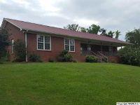 Home for sale: 120 Causey Ln., Attalla, AL 35954