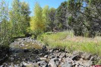 Home for sale: 2900 P50 Rd., Hotchkiss, CO 81419