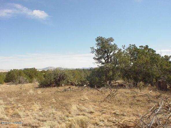 1b N. 8690, Concho, AZ 85924 Photo 25