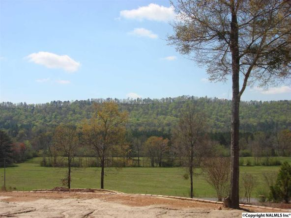 7724 Fords Valley Rd., Hokes Bluff, AL 35903 Photo 3