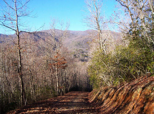 Hwy. 64 East, Hayesville, NC 28904 Photo 1