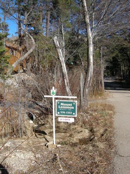 11173 E. Carter Canyon E, Mount Lemmon, AZ 85619 Photo 2