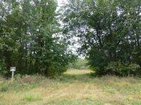 Home for sale: 1350 East, Oquawka, IL 61469