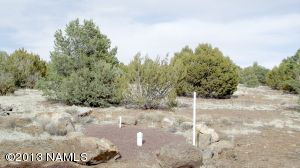 10705 N. Falcon Ridge, Williams, AZ 86046 Photo 2