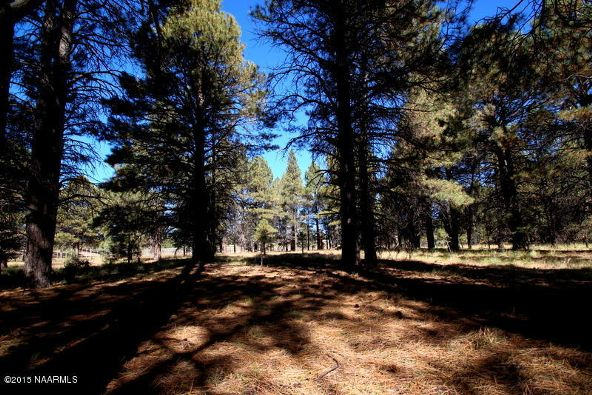 3451 S. Lake Mary Rd., Flagstaff, AZ 86005 Photo 9