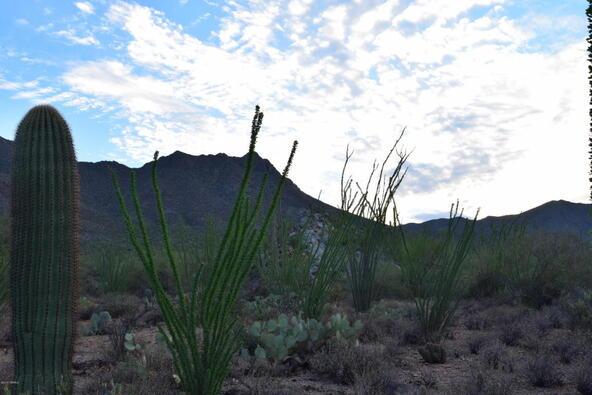 6tbd W. Sweetwater, Tucson, AZ 85745 Photo 8