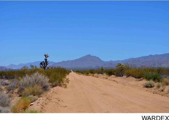 239 S. Tortoise Rd., Yucca, AZ 86438 Photo 2