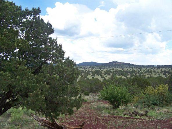 1867 E. Brookhill Rd., Williams, AZ 86046 Photo 18