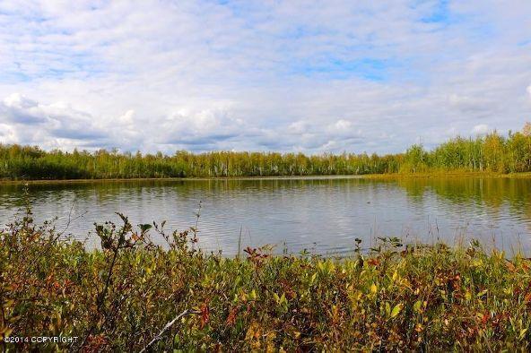 13923 W. Big Lake Rd., Big Lake, AK 99652 Photo 6
