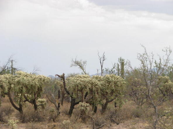 5352 W. Wild Desert Ln., Tucson, AZ 85742 Photo 21