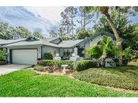 Home for sale: 210 Pinewinds Blvd., Oldsmar, FL 34677