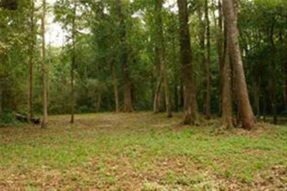 00 Tau Trail, Monticello, FL 32344 Photo 3