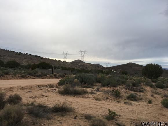 7340 N. Frerichs Ranch Rd., Hackberry, AZ 86411 Photo 19
