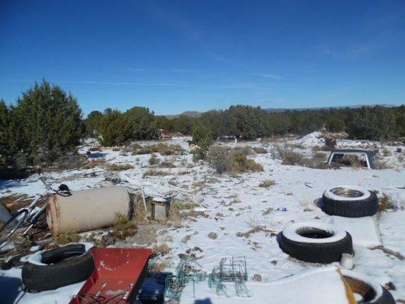 459 Hardrock Rd., Seligman, AZ 86337 Photo 37