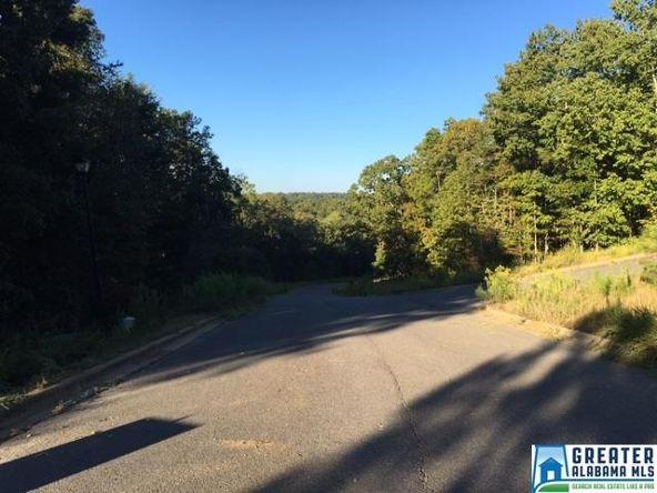 380 Gray Fox Rd., Springville, AL 35146 Photo 11
