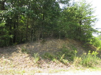 Home for sale: Buck Hollow Rd., Maryville, TN 37803