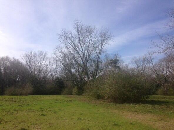24711 Hwy. 59, Robertsdale, AL 36567 Photo 3