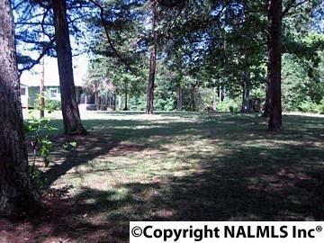 1172 County Rd. 639, Mentone, AL 35984 Photo 20