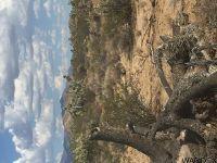 Home for sale: 1 Desert View, Yucca, AZ 86438