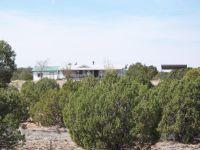 Home for sale: 137 Eureka Ln. Cr 9232, Concho, AZ 85924