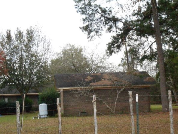 409 County Rd. 6, Black, AL 36314 Photo 35