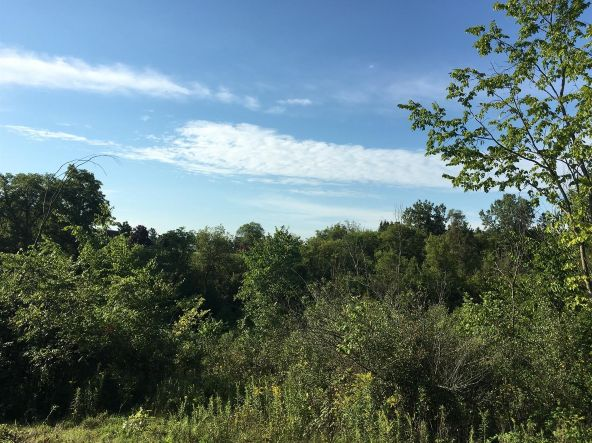 5550 Clay Creek Creek, Saline, MI 48176 Photo 3