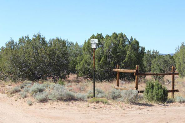 7209 N. Hwy. 191 --, Sanders, AZ 86512 Photo 9