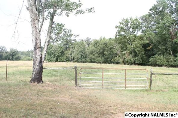 797 County Rd. 522, Fyffe, AL 35971 Photo 38