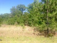 Home for sale: 113 Case Rd., Sylvester, GA 31791