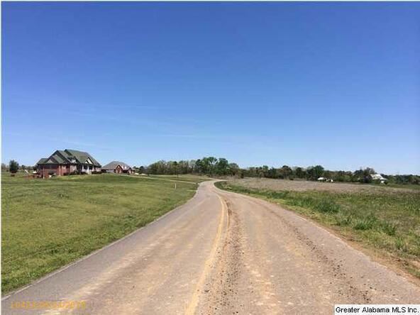 3980 Tanner Rd., Dora, AL 35062 Photo 3