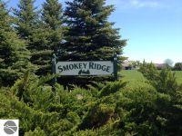 Home for sale: 3973 Smokey Ridge Rd., Traverse City, MI 49686