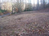 Home for sale: Lot 8 Pandora Fork Rd., Butler, TN 37640
