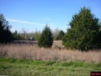 Home for sale: Lot 25 Falltime, Bull Shoals, AR 72619