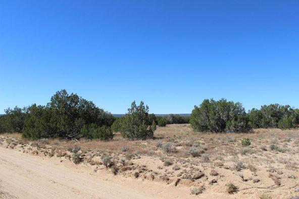 7209 N. Hwy. 191 --, Sanders, AZ 86512 Photo 14